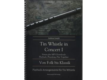 Tin Whistle in Concert